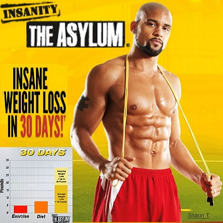 insanity workout download online
